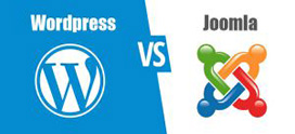 چگونه joomla و wordpress را ایمن نماییم؟