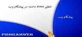 تنظیم DNS دامنه در پیشگام وب